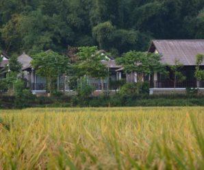 Sol Bungalows, Mai Châu, Hòa Bình