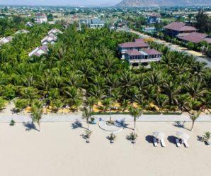 Con Gà Vàng Resort, Ninh Thuận ****