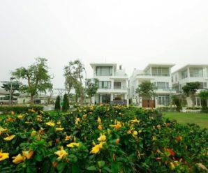 Nghỉ Tết Tại Biệt Thự FLC Sầm Sơn,Thanh Hóa