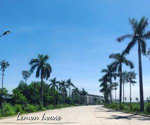 Lemon House, Hạ Long, Quảng Ninh