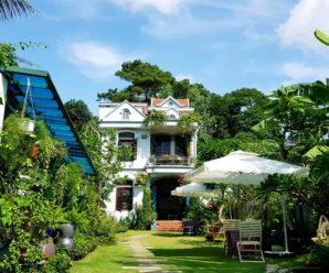 Ginger Homestay Hạ Long