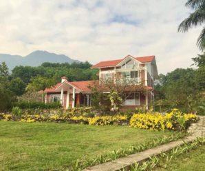 Tường Vi House, Thạch Thất, Hà Nội.